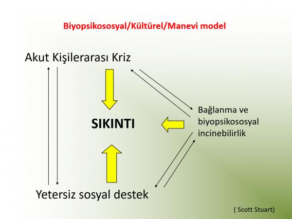 kisilerarasiiliskilerpsikoterapisi-dernegi-slayt-12